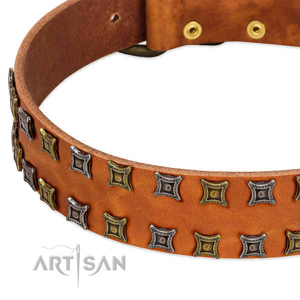 High quality leather dog collar for your impressive canine