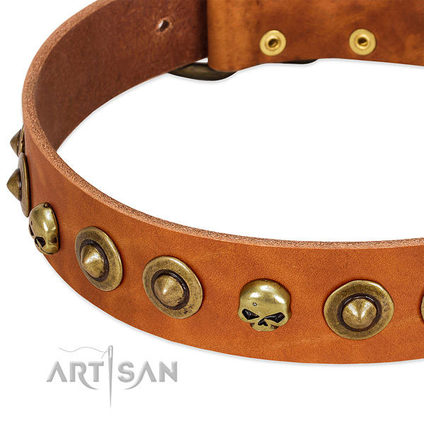 Trendy adornments on full grain genuine leather collar for your dog