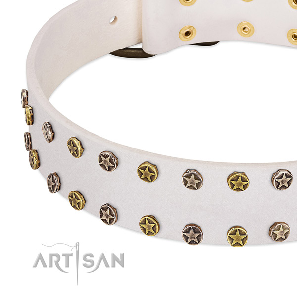 Inimitable studs on full grain natural leather collar for your canine