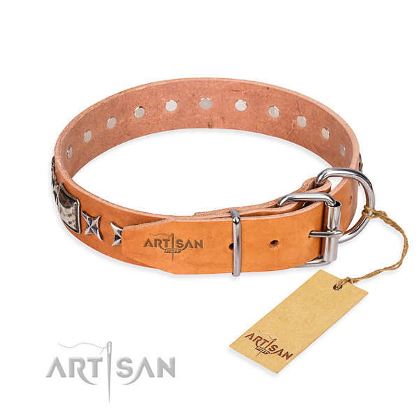 Quality studded dog collar of leather