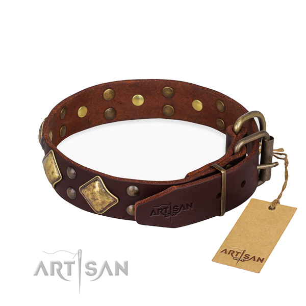 Full grain leather dog collar with unusual reliable studs