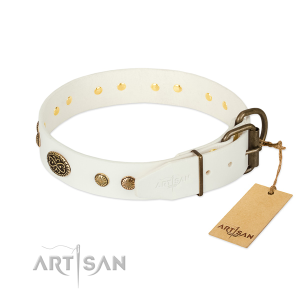 Durable adornments on full grain leather dog collar for your canine