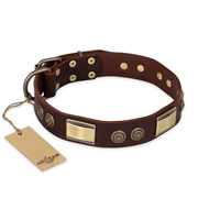 """Golden Stones"" FDT Artisan Brown Leather dog Collar with Old Bronze Look Plates and Circles"