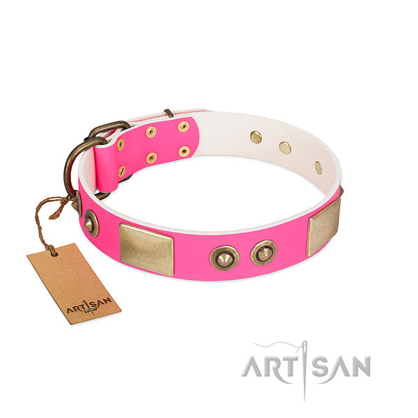 Strong decorations on genuine leather dog collar for your doggie