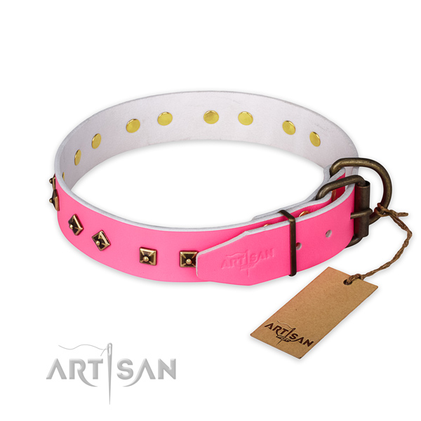 Durable buckle on full grain leather collar for walking your four-legged friend
