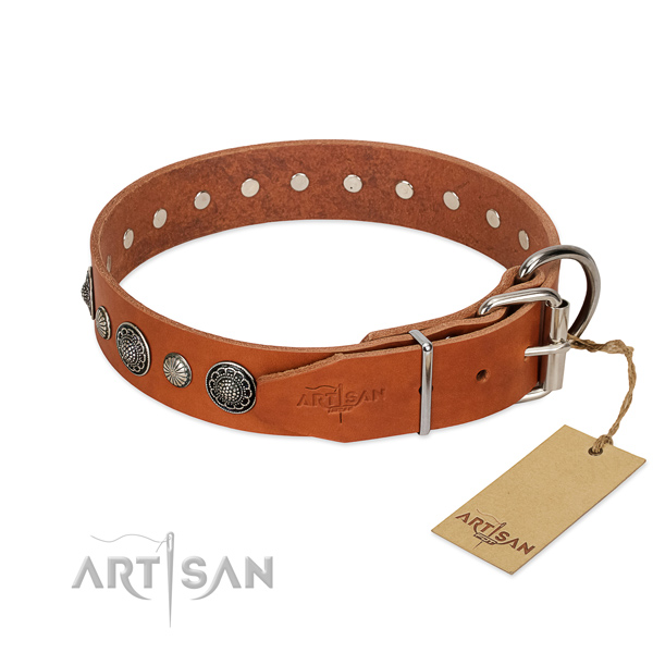 Top rate full grain leather dog collar with corrosion resistant D-ring