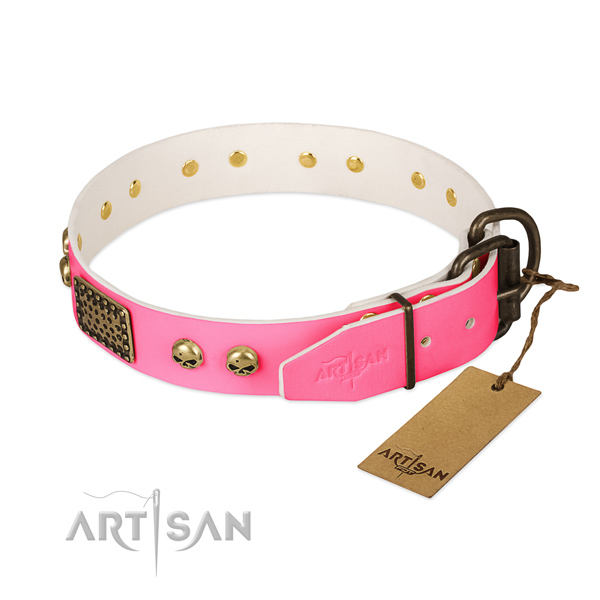 Strong decorations on daily use dog collar