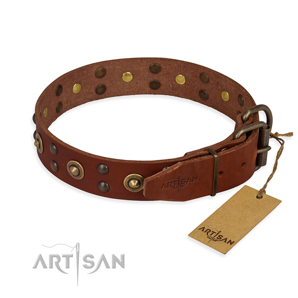 Corrosion resistant traditional buckle on genuine leather collar for your beautiful four-legged friend