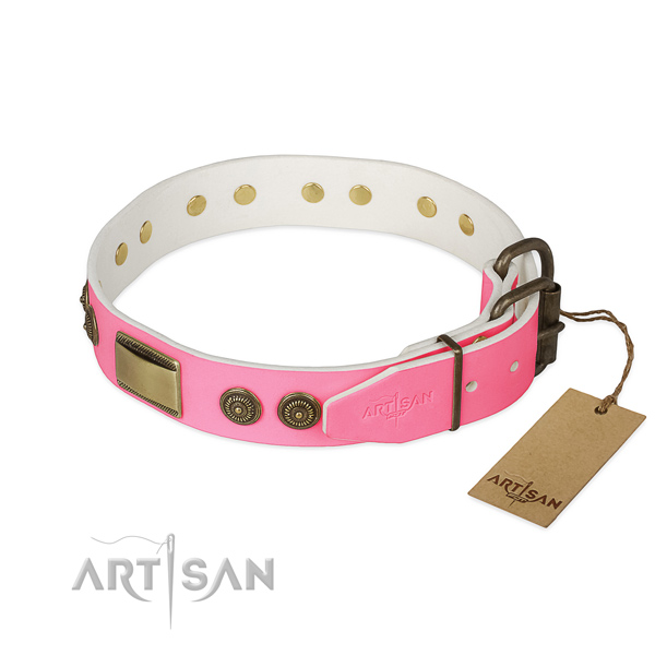 Corrosion proof D-ring on walking dog collar