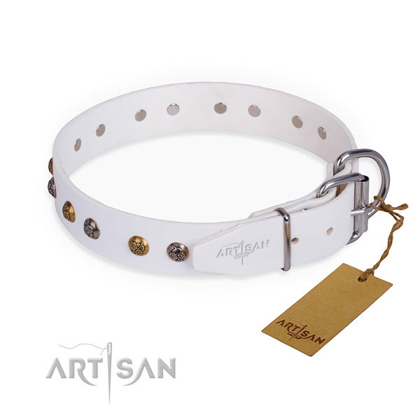Genuine leather dog collar with exceptional rust-proof embellishments