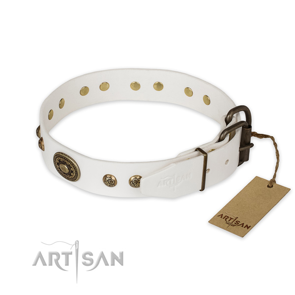 Strong D-ring on genuine leather collar for stylish walking your canine