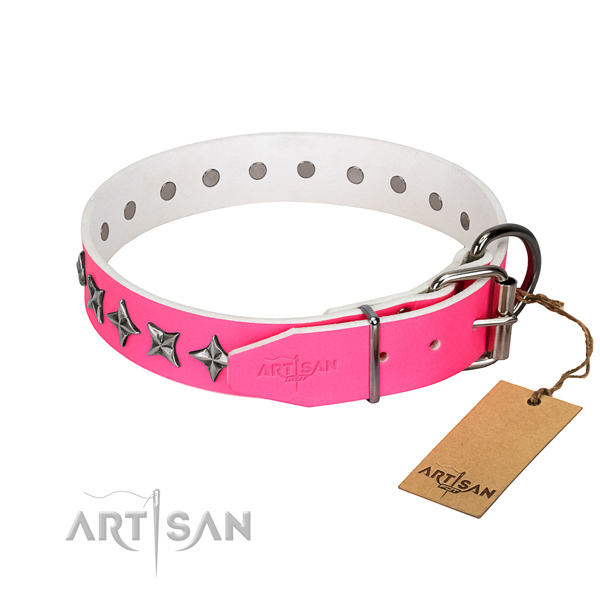 Top notch leather dog collar with inimitable decorations