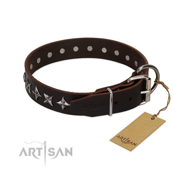 Everyday walking adorned dog collar of quality full grain genuine leather