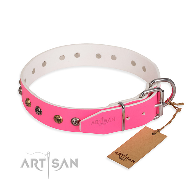 Full grain leather dog collar with remarkable strong adornments
