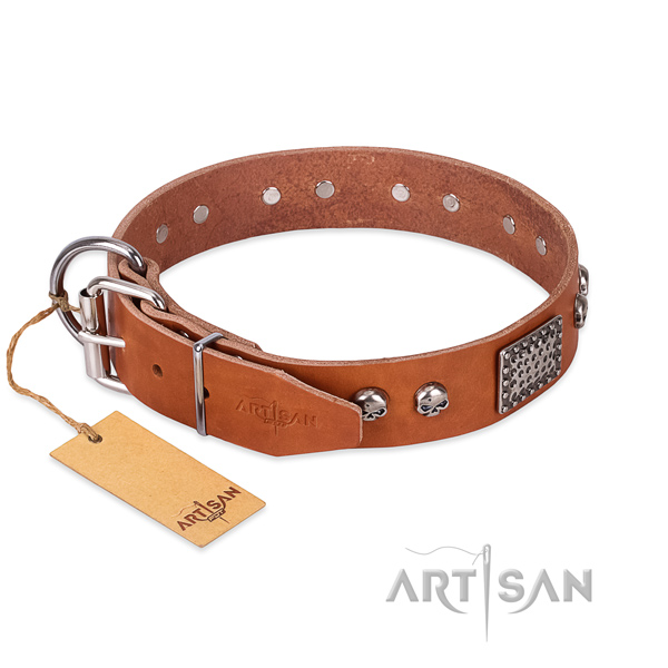 Corrosion proof D-ring on basic training dog collar