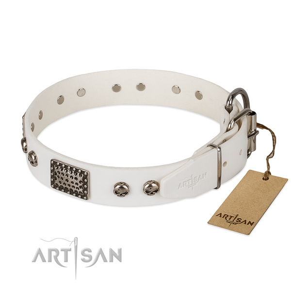 Durable embellishments on daily use dog collar