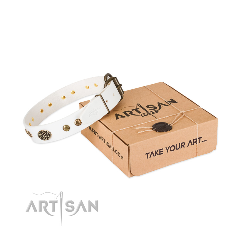 Durable fittings on leather dog collar for your canine