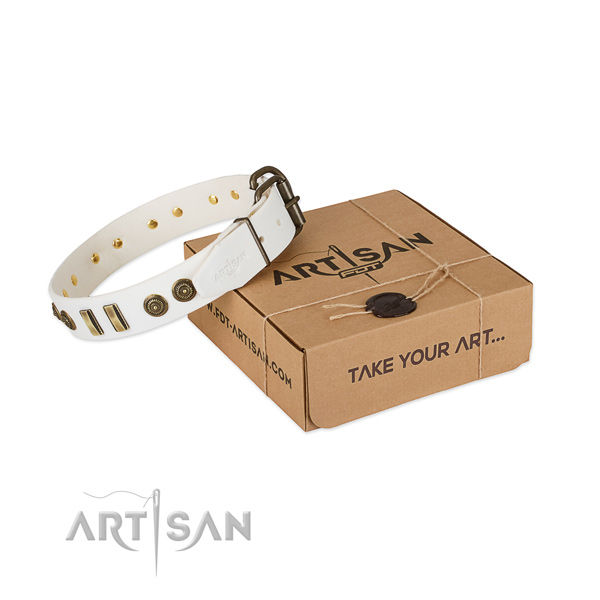 Rust-proof studs on full grain natural leather dog collar for your pet