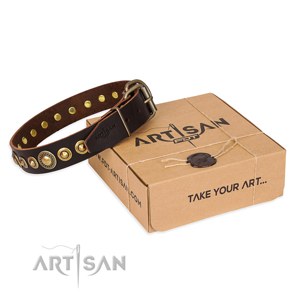 Strong genuine leather dog collar made for everyday walking