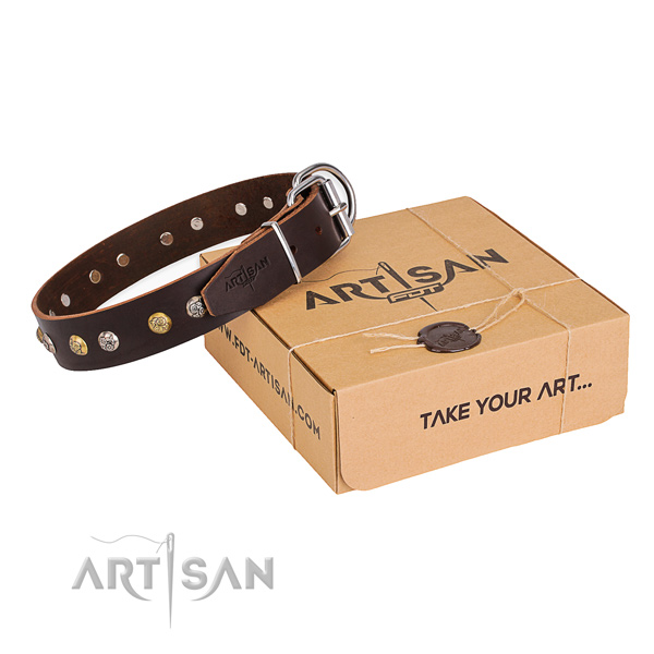 Best quality full grain natural leather dog collar made for everyday use