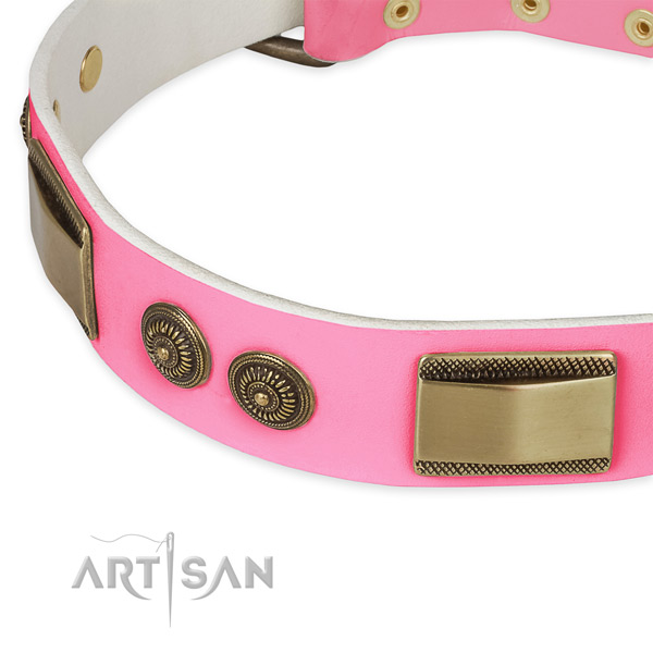Leather dog collar with adornments for everyday walking