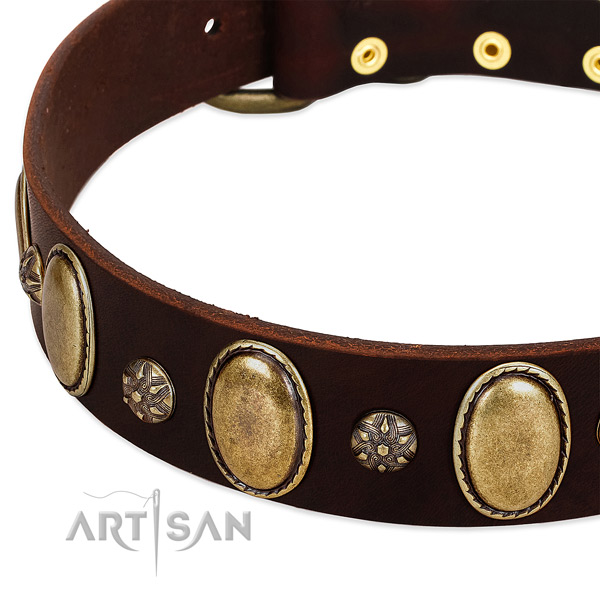 Easy wearing top notch full grain leather dog collar