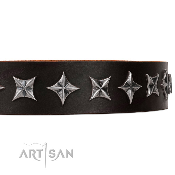 Everyday walking studded dog collar of high quality natural leather