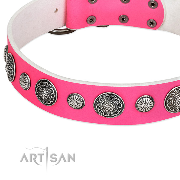 Genuine leather collar with durable buckle for your lovely pet