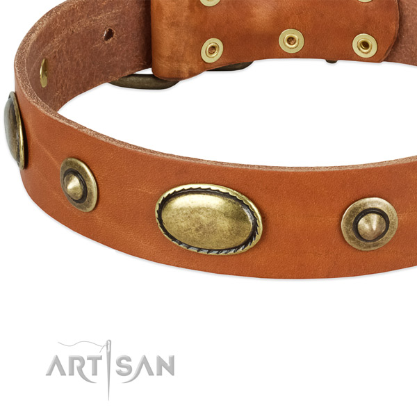 Corrosion proof adornments on full grain natural leather dog collar for your pet