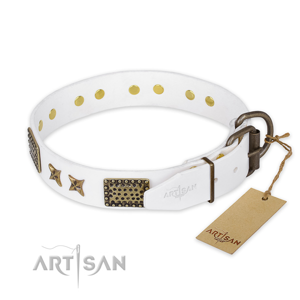 Durable traditional buckle on full grain natural leather collar for your stylish pet