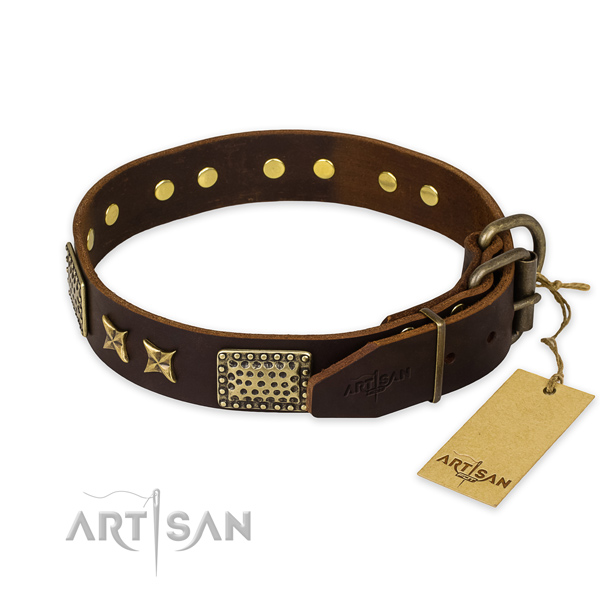 Strong D-ring on leather collar for your attractive canine
