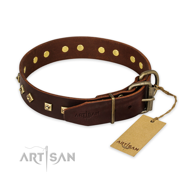 Strong buckle on leather collar for fancy walking your doggie