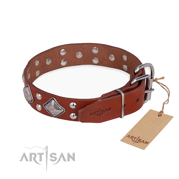 Full grain leather dog collar with stylish rust resistant embellishments