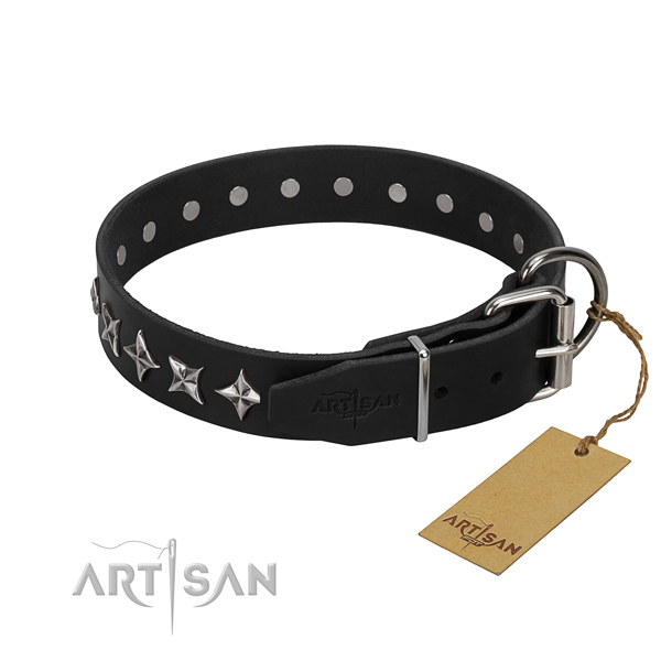 Daily use embellished dog collar of finest quality genuine leather