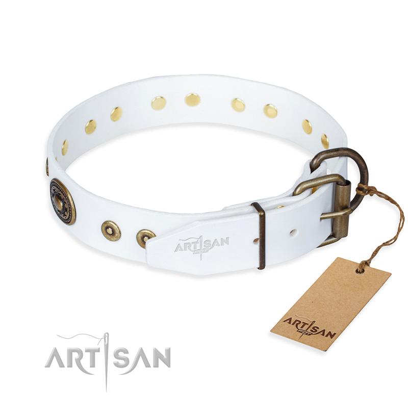 Best Magnetic Collar For Dogs