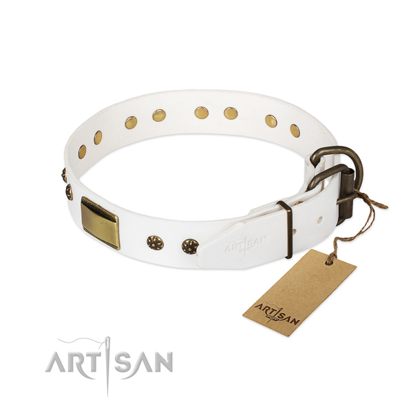 Genuine leather dog collar with rust resistant hardware and embellishments