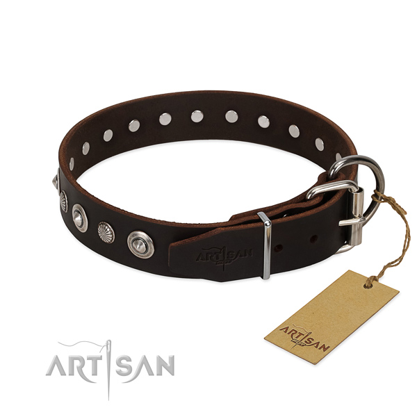 Quality full grain natural leather dog collar with stylish design adornments