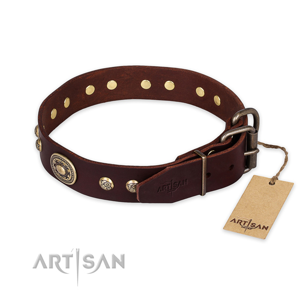 Rust resistant hardware on genuine leather collar for stylish walking your pet