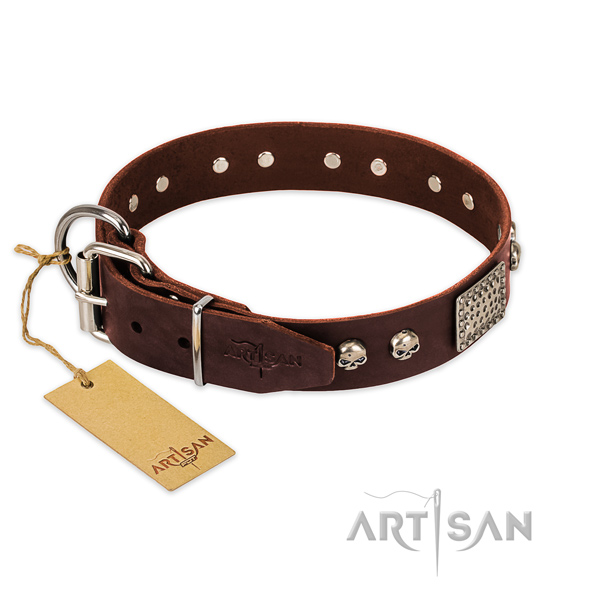 Strong buckle on stylish walking dog collar