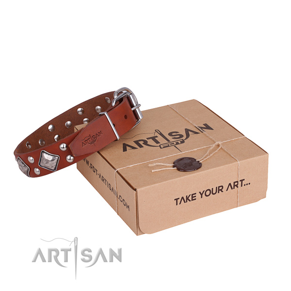 Everyday walking dog collar with Stylish rust-proof decorations