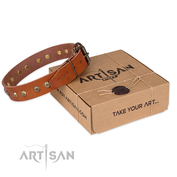 Rust-proof buckle on leather collar for your attractive canine