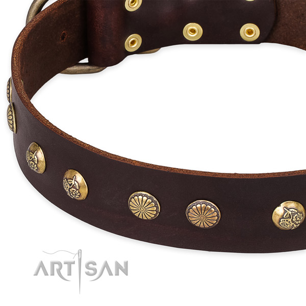 Full grain natural leather collar with strong fittings for your impressive doggie