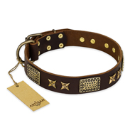 """Sparkling Bronze"" FDT Artisan Genuine Leather dog Collar with Bronze Look Stars and Plates"