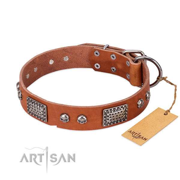 Easy to adjust genuine leather dog collar for walking your dog