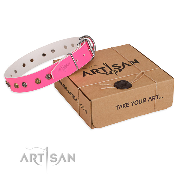 Stylish walking dog collar with Incredible strong studs