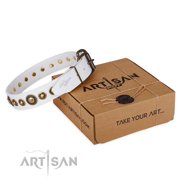 High quality full grain leather dog collar crafted for everyday use