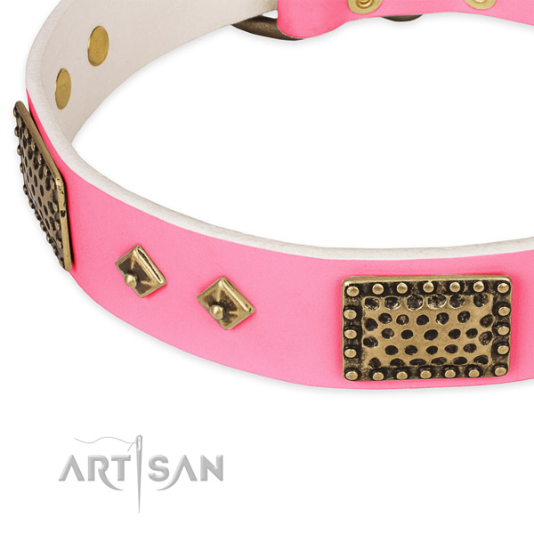Natural genuine leather dog collar with embellishments for walking