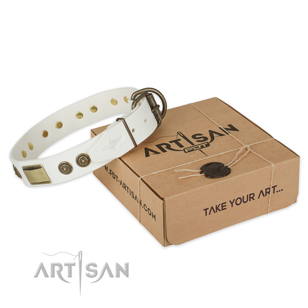 Rust-proof hardware on full grain natural leather dog collar for everyday use