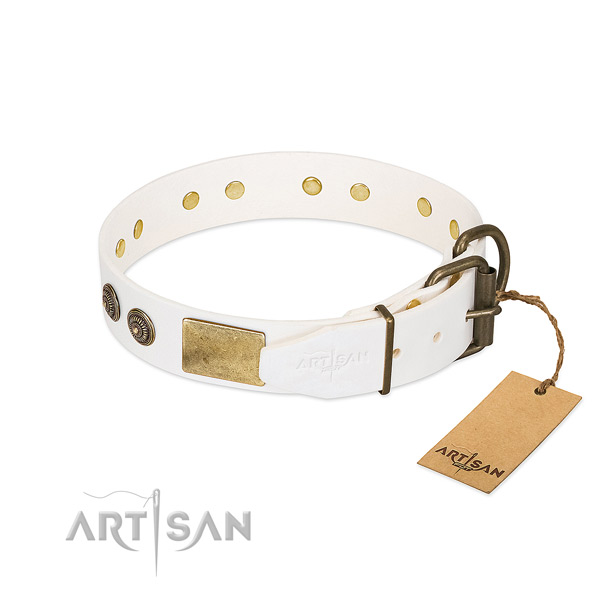 Strong hardware on natural genuine leather collar for walking your four-legged friend