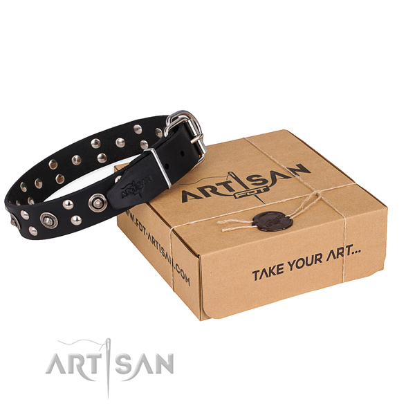 Comfortable wearing dog collar with Significant strong embellishments